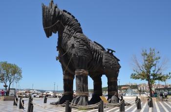Canakkale horse